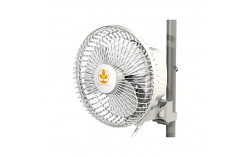 Oscillating/Clip/Wall Fans